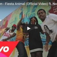 fiesta-animal